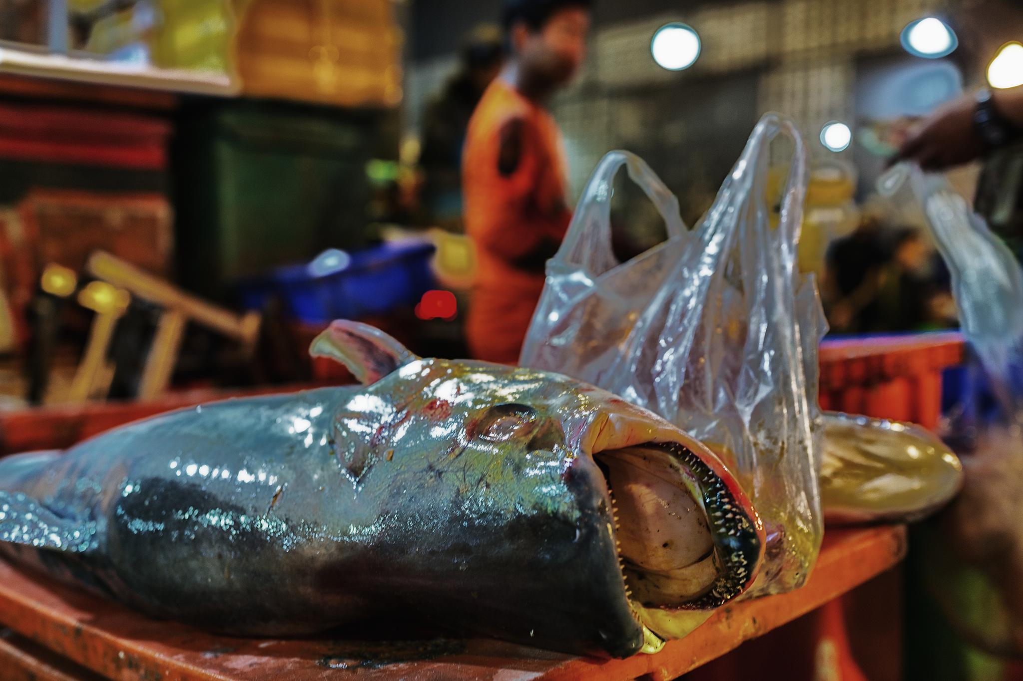 Fischmarkt6