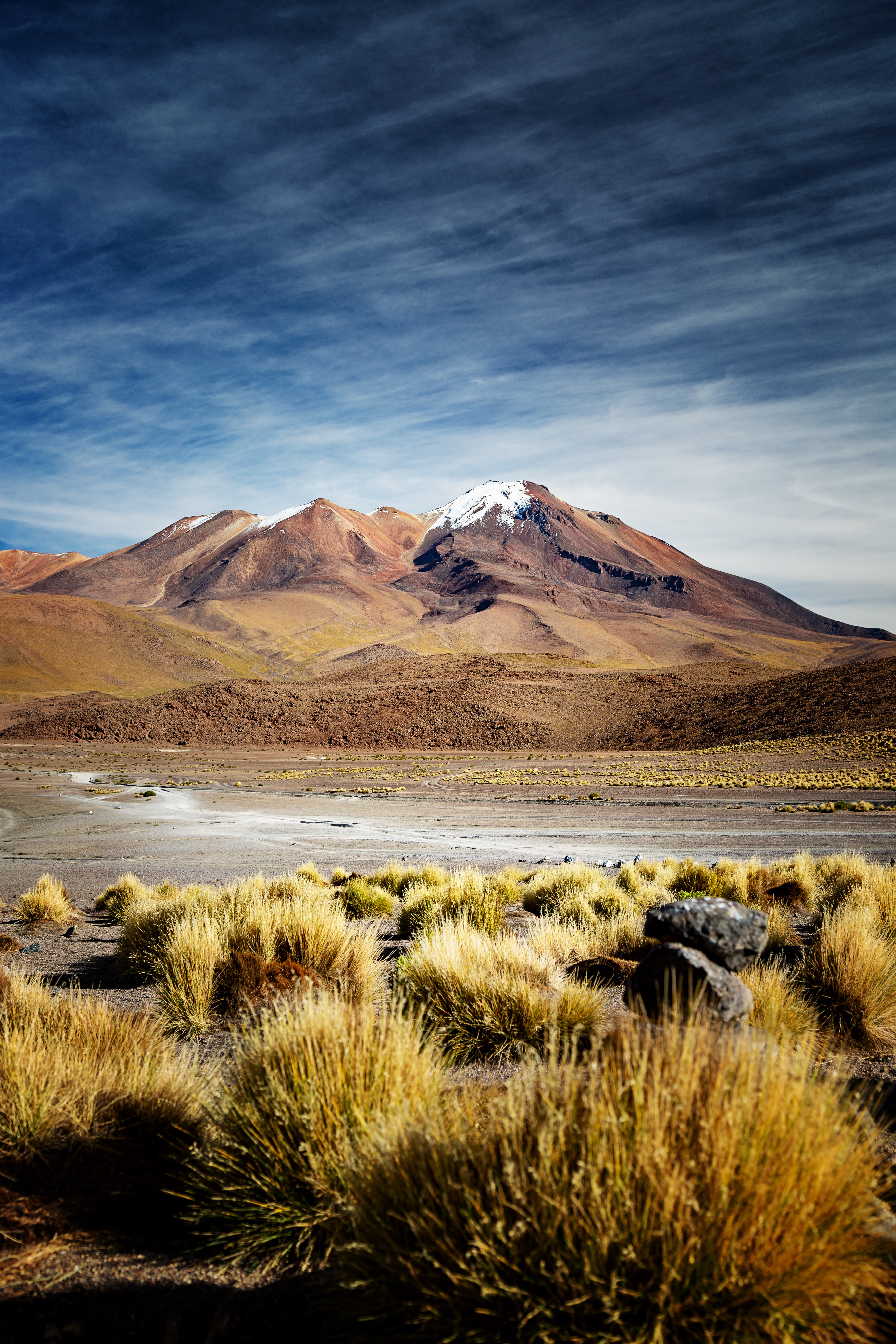Altiplano Blick zum Vulkan