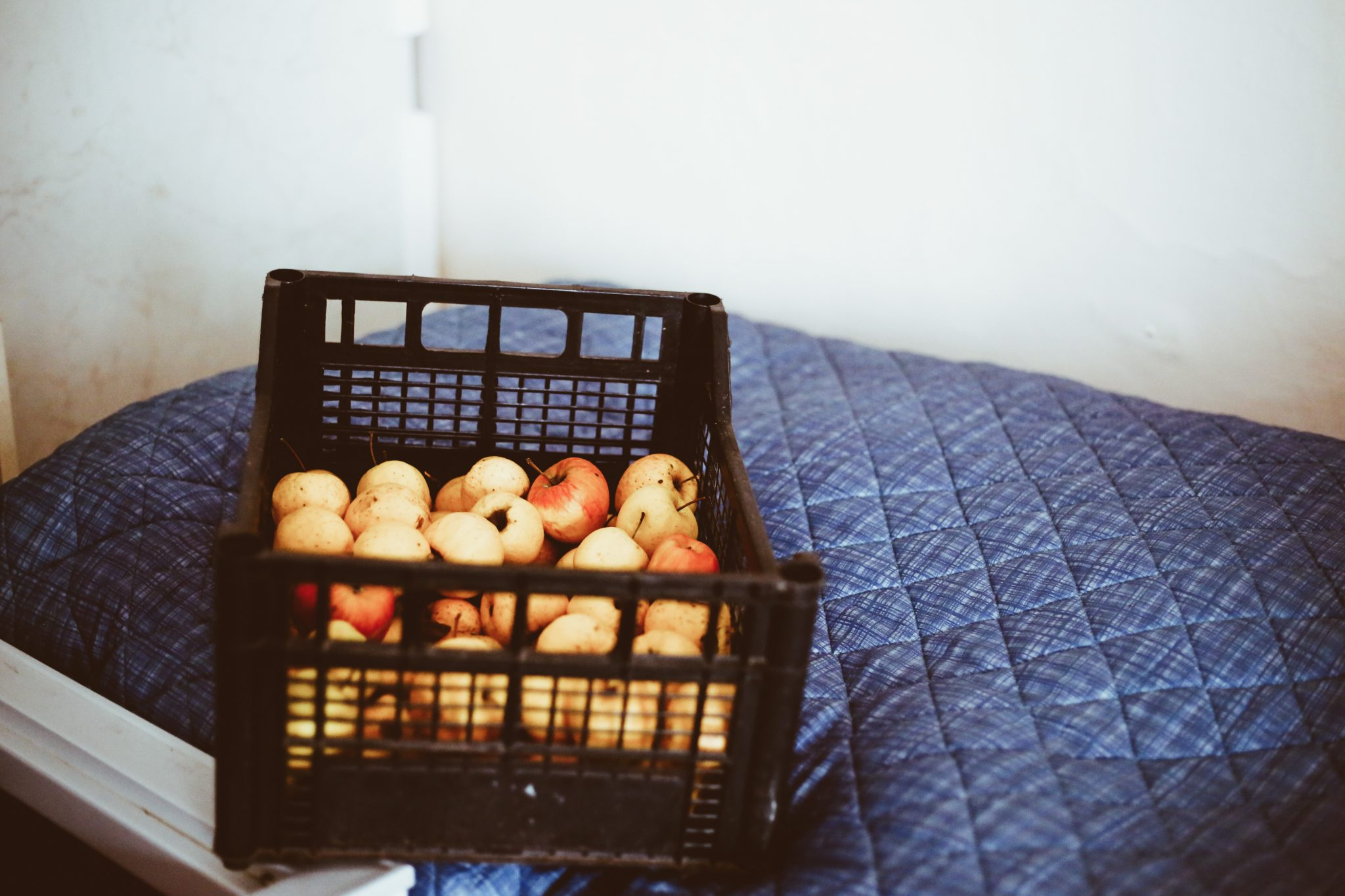 Kiste mit Äpfel auf einem Bett